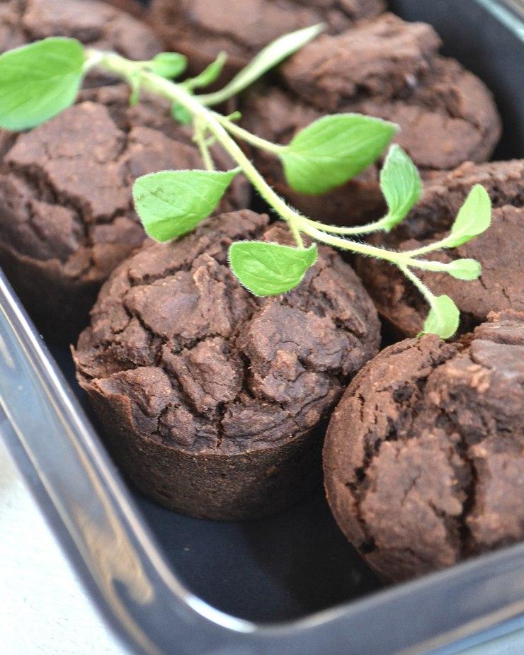 Schnelle Vegane Kakao-Muffins